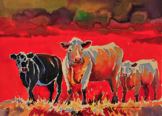 A Palette Of Cows Gregg Johnson