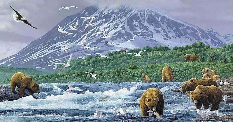Absolute Alaska Simon Combes