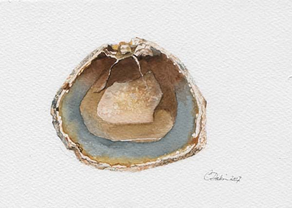 Agate Mineral - Charity Dakin
