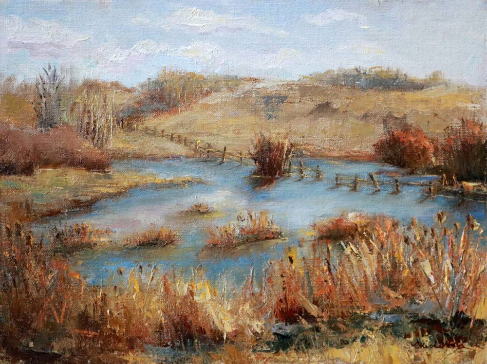 Alberta Grasslands HWY 21 to Camrose - Michelle Murray
