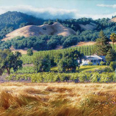 Alexander Valley Winery June Carey