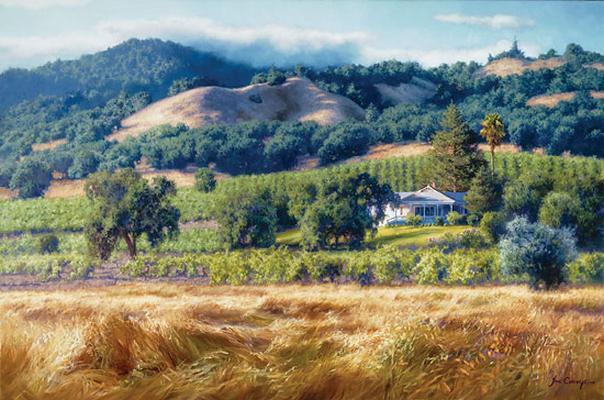 Alexander Valley Winery June Carey