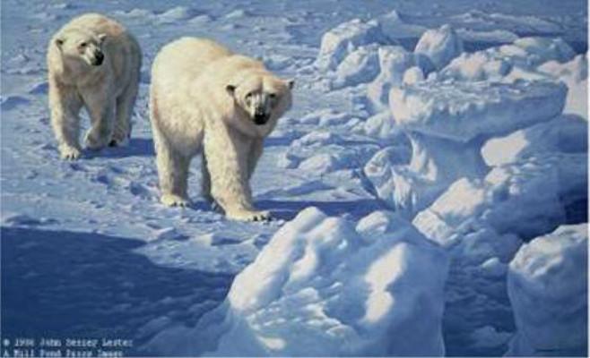 Along The Ice Floe John Seerey Lester
