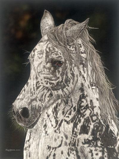 American Horse Judy Larson