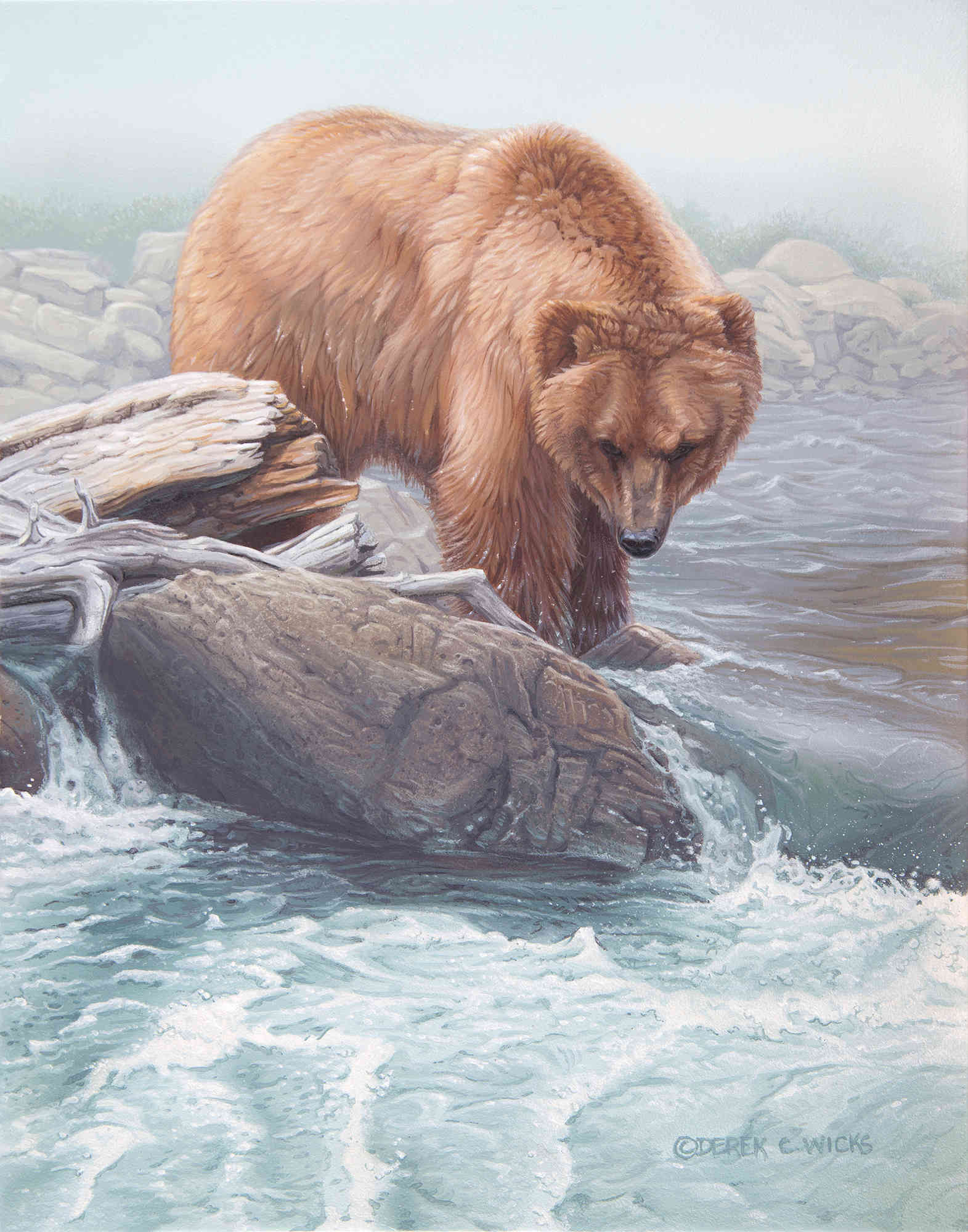 Anytime Now Grizzly Derek Wicks