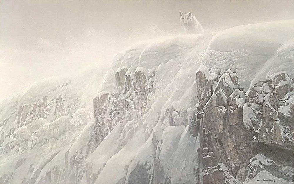 Arctic Cliff - White Wolves - Robert Bateman