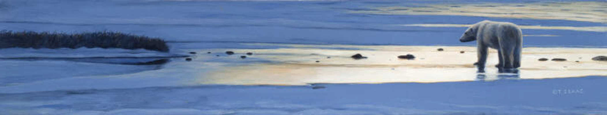 Arctic Solitude Study Terry Isaac
