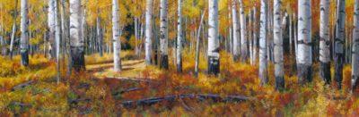 Aspen Grove - Andrew Kiss