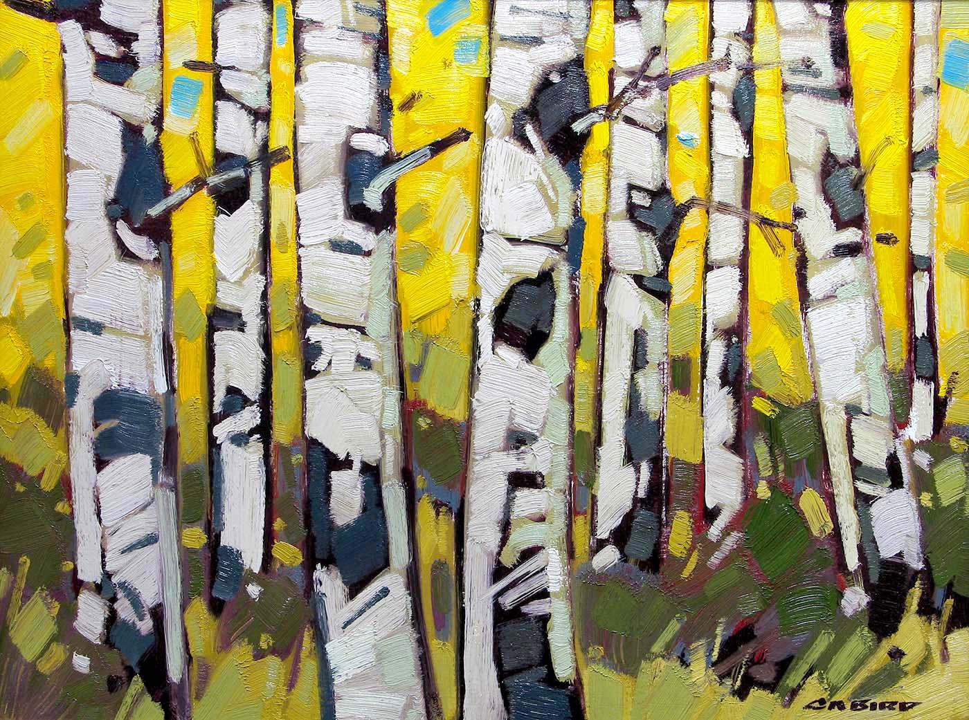 Aspen Patterns - Cameron Bird