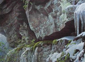 At the Cliff - Bobcat - Robert Bateman