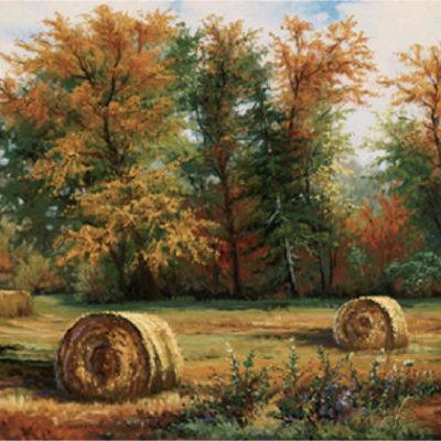 Autumn Daze Jonn Einerssen