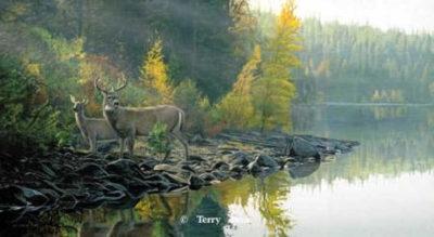 Autumn Gold Terry Isaac