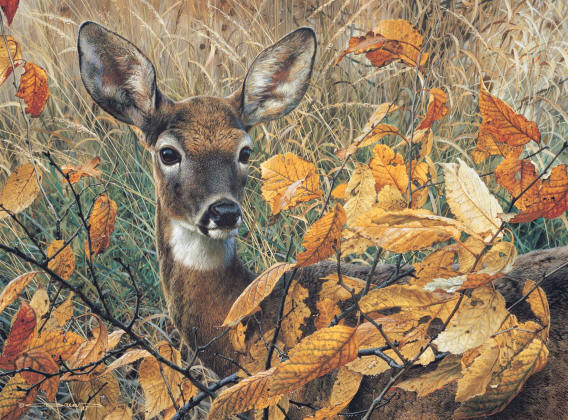 Autumn Lady Carl Brenders