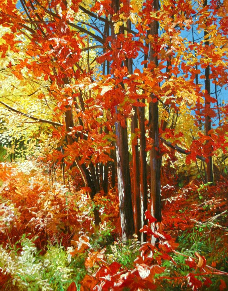 Autumn Red - Andrew Kiss