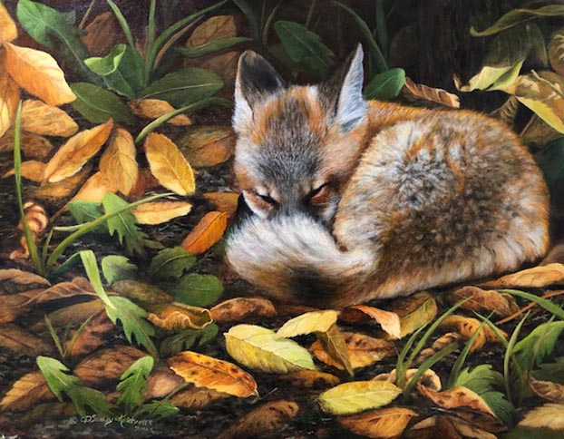 Autumn Snooze - Cindy Sorley-Keichinger