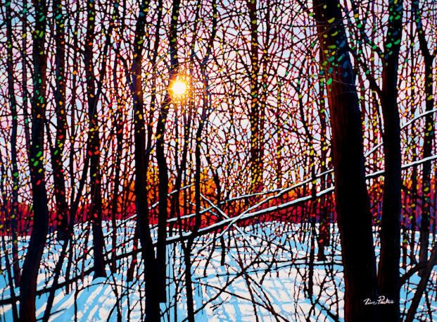 Autumn Snowscape Tim Packer