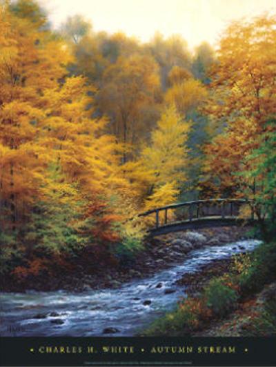 Autumn Streams Charles White