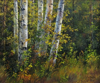 Autumn Trees in Jasper, AB - Elsie Baer