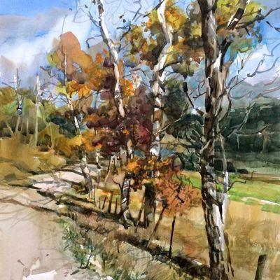 Birches, Road to Lake (Near Merritt) - Nicoletta Baumeister