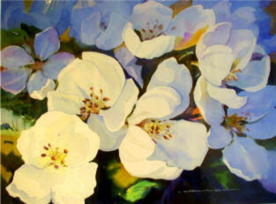 Blossoms In Shadow Gregg Johnson