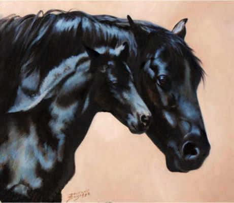 Bonding Morgan Mare And Foal Maurade Baynton