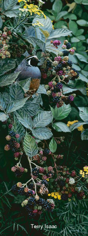 Brambles And Brass Buttons Terry Isaac
