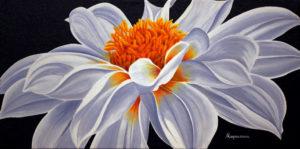 Bright White Dahlia Dennis Magnusson
