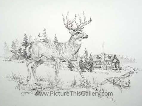 Cabin View - Darrell Bush