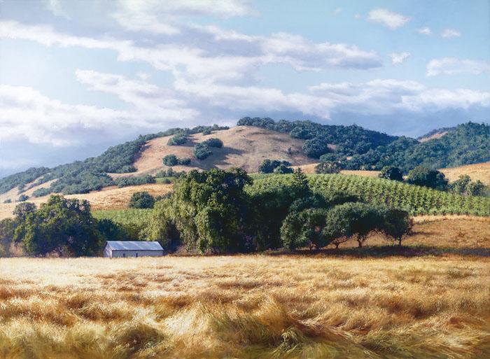 California Wine Country June Carey