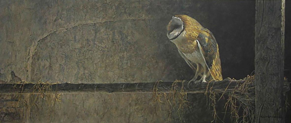 Catching the Light - Barn Owl - Robert Bateman