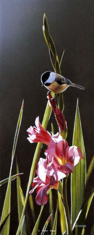 Chickadee And Pink Gladiolas Terry Isaac