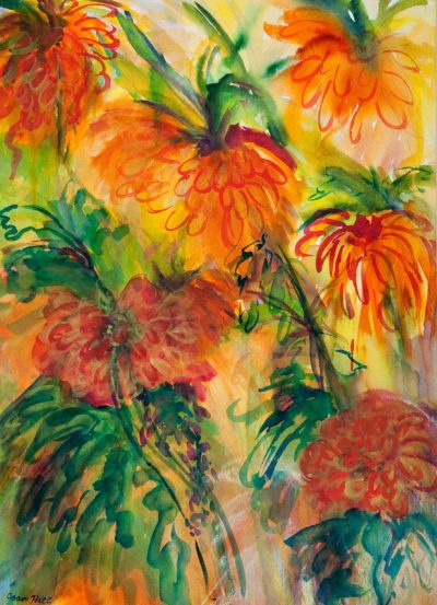 Chrysanthemums - Joan Hill