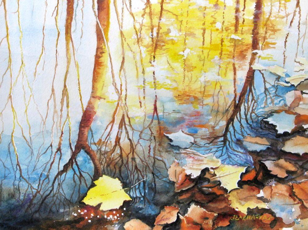Colors Adrift - John Zacharias