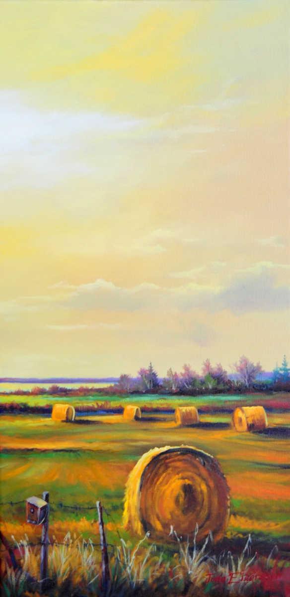 Country Light Jonn Einerssen