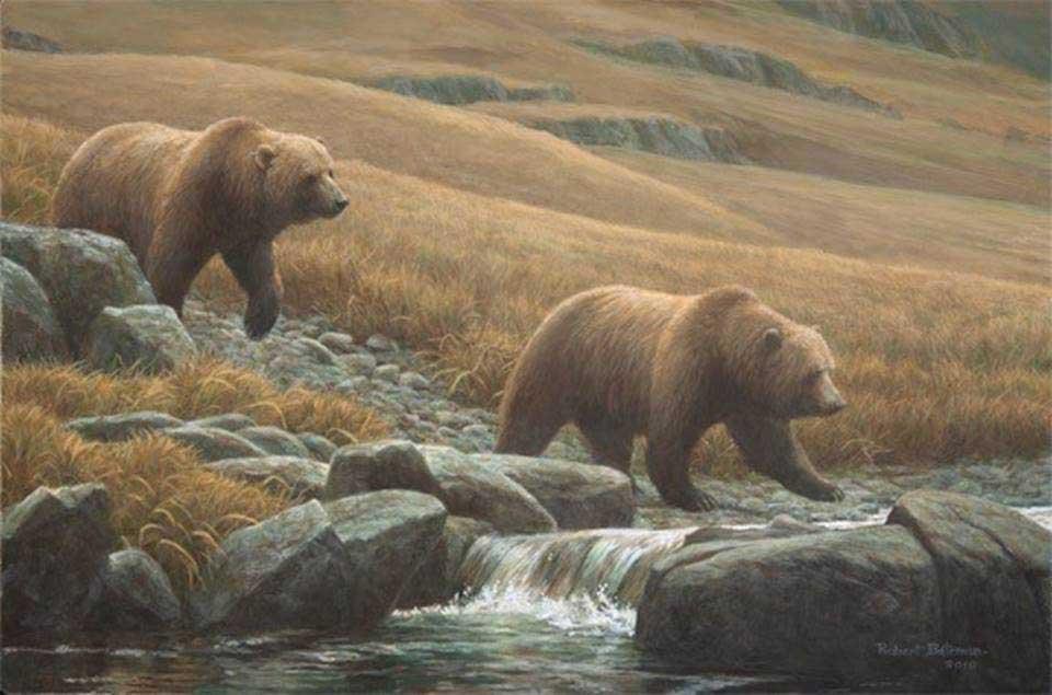 Courting Grizzlies - Robert Bateman