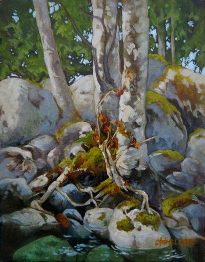 Creekside Carmel Clare