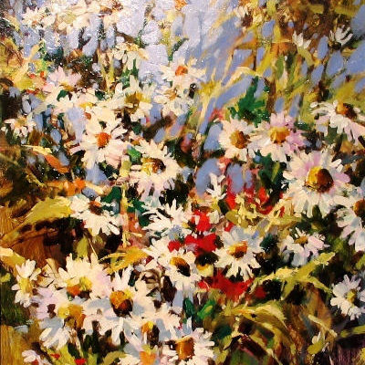 Daisies Brent Heighton