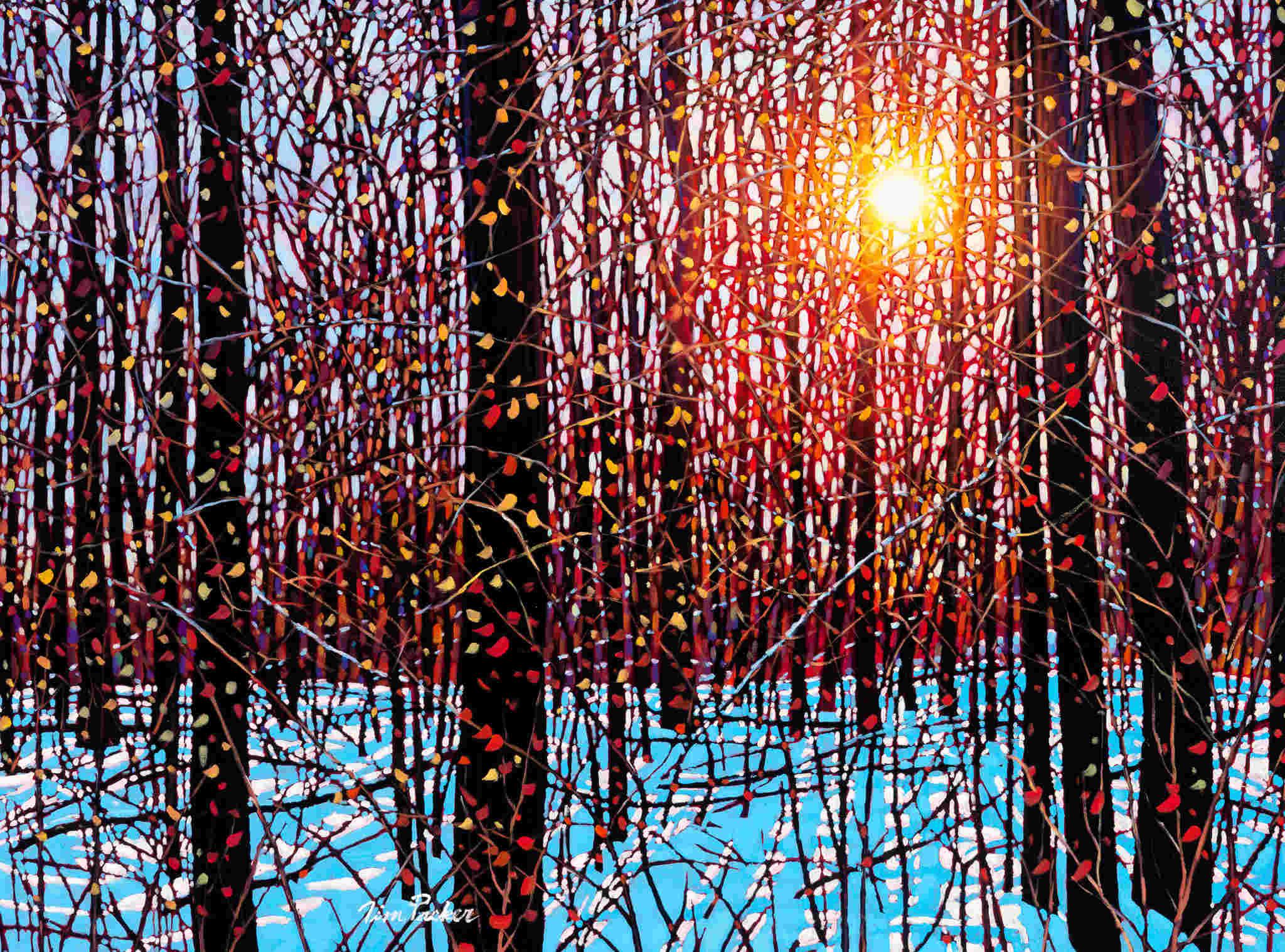 December Sunshine Tim Packer