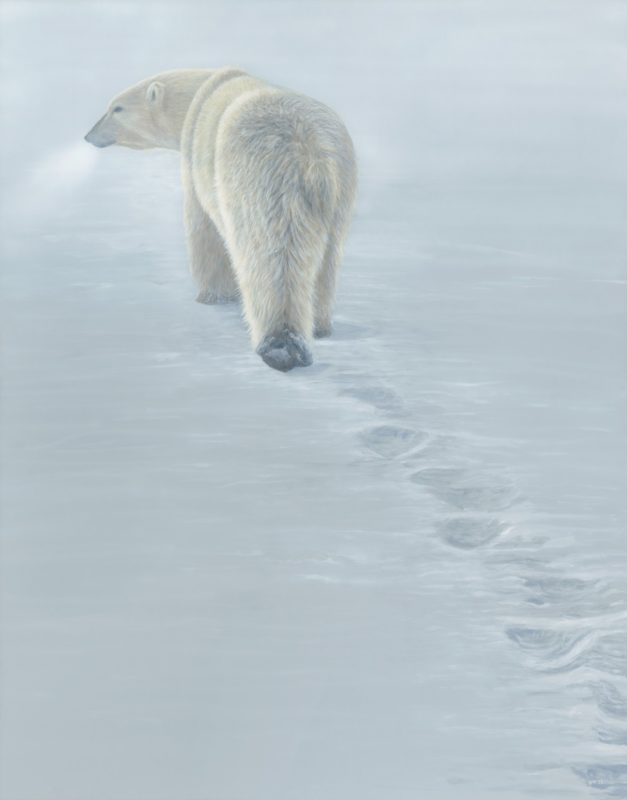 Disappearing Footprints Terry Isaac