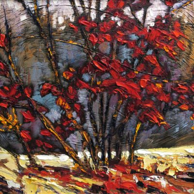 Dogwood Shrub - Lois Bauman