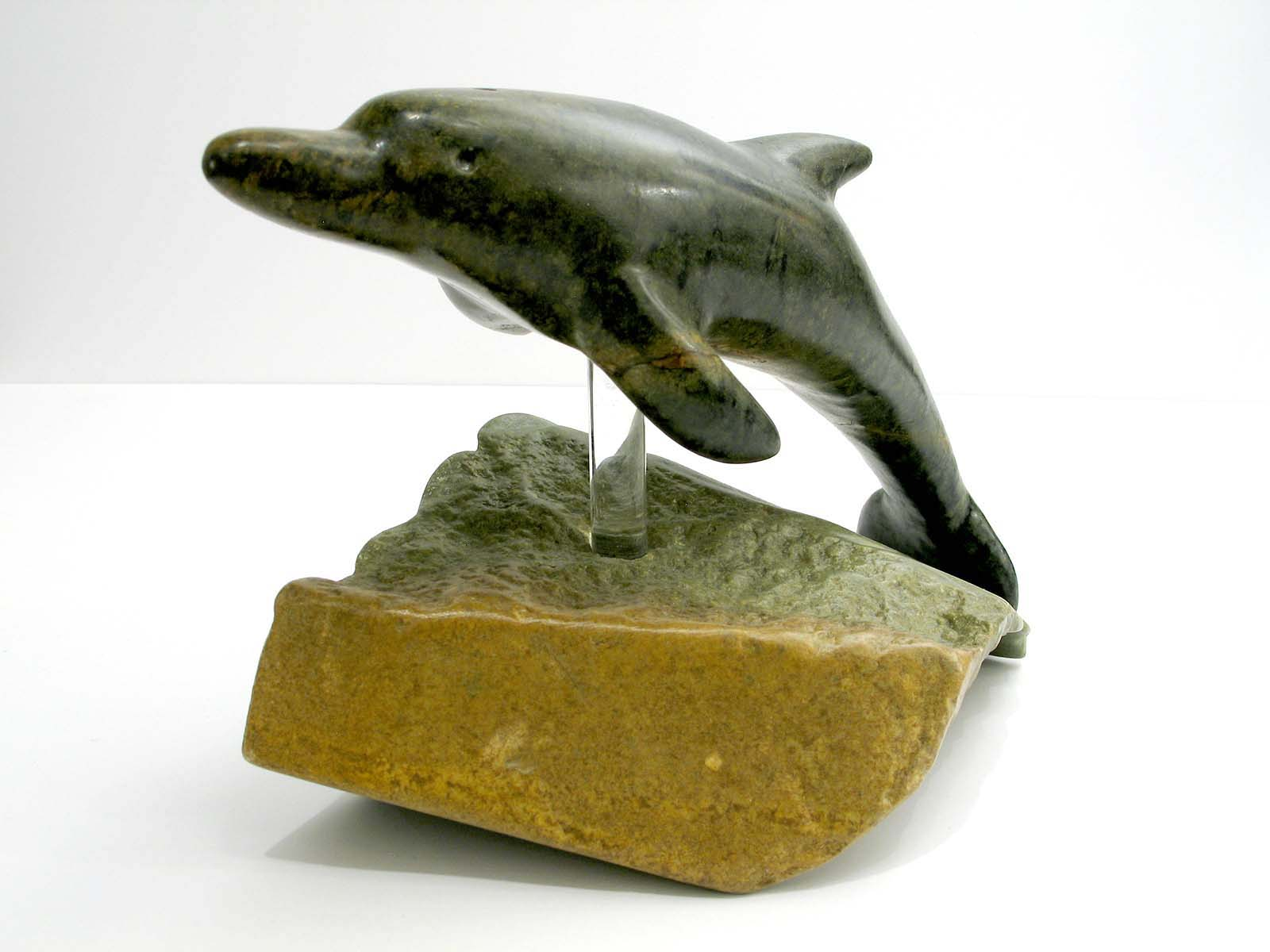 Dolphin - Jim Flaman