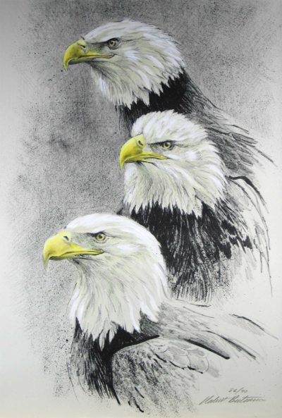 Eagle I - Etching - Robert Bateman