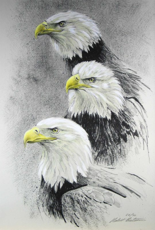 Eagle I - Etching - Robert Bateman