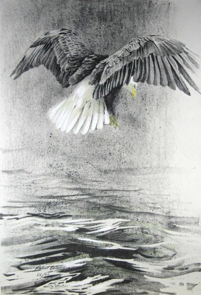 Eagle IV - Etching - Robert Bateman