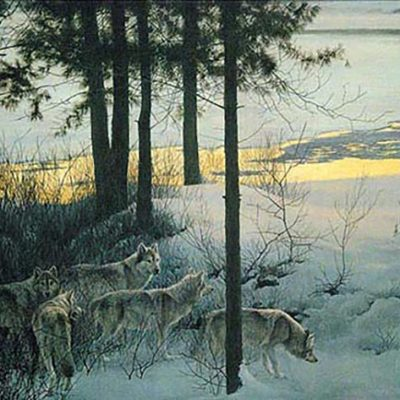 Edge of Night - Timber Wolves - Robert Bateman