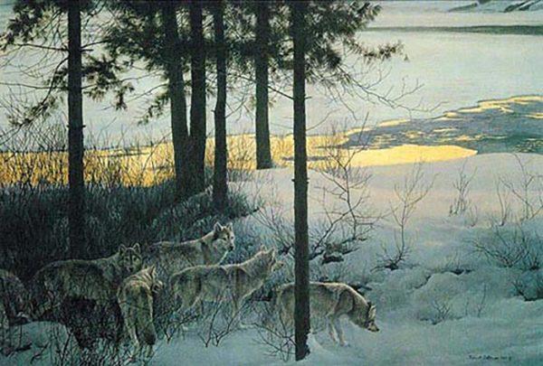 Edge of Night - Timber Wolves - Robert Bateman