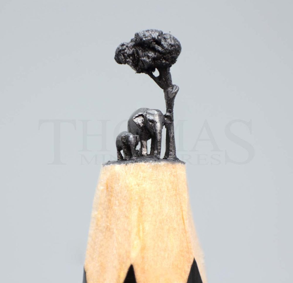 Elephant - Thomas Jacob