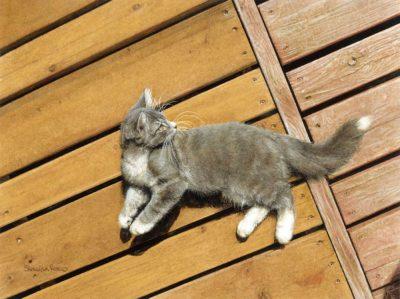 Enjoying the Sun - Sueellen Ross