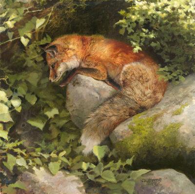 Escape By A Hare Bonnie Marris
