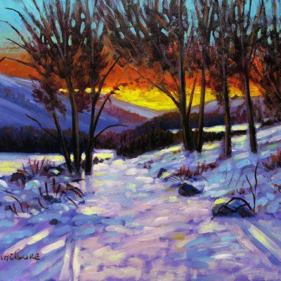 Evening Light - Chris MacClure